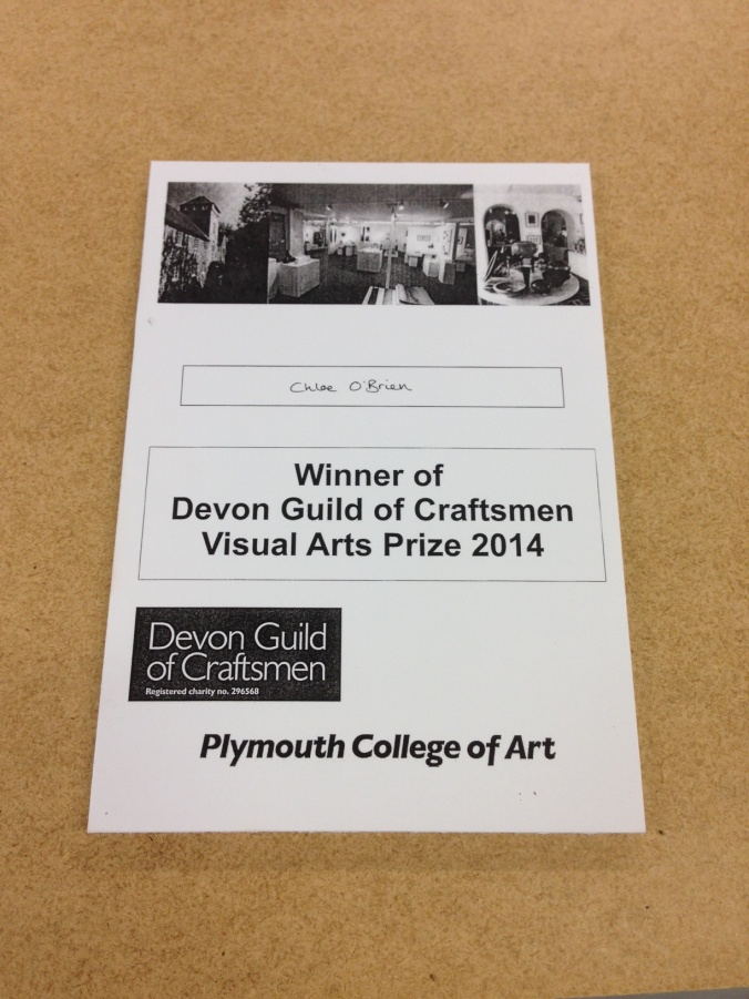 Devon Guild of Craftsmen Visual Arts Prize 2014
